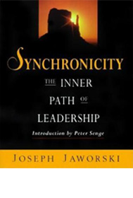 synchronicity-inner-path-leadership